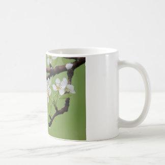Coffee mug:  Delight yourself in the Lord. Coffee Mug