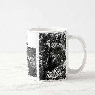 Coffee Mug Donna Uson Photography