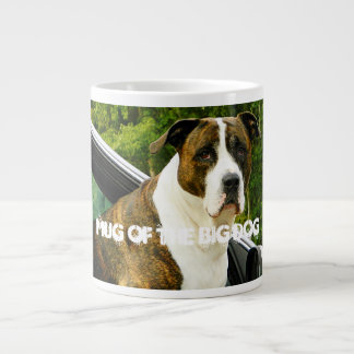 Coffee Mug For Head Of The Household