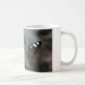 coffee mug with 2 butterflies...come together