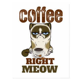Coffee Right Meow Postcard