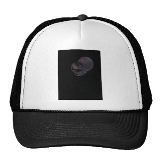 Coins and Constellations Trucker Hat