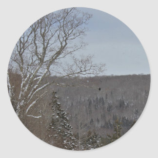 Cold and Lonely Classic Round Sticker