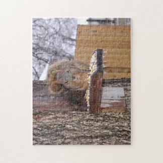 Cold Oklahoma Squirrel Eating Corn Puzzle