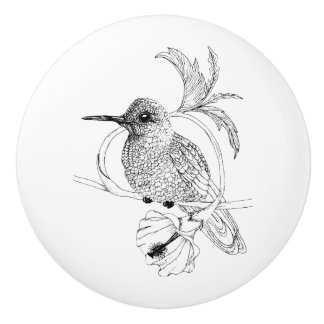 Colibri Bird Illustration Ceramic Knob