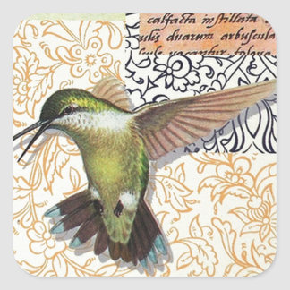 Colibri Square Sticker