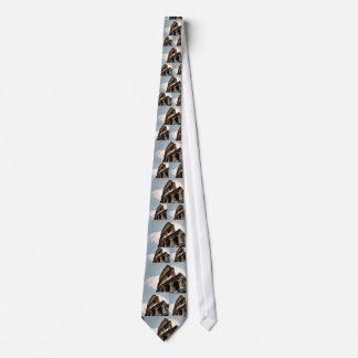 Colisé romain cravates customisées