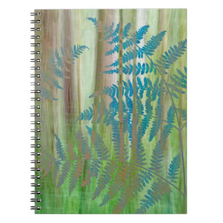 Collage of Bracken Ferns and Forest | Seabeck, WA Notebook