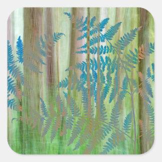 Collage of Bracken Ferns and Forest | Seabeck, WA Square Sticker