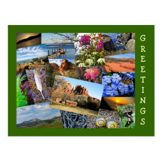 Collage of Nature & Wildlife Postcard