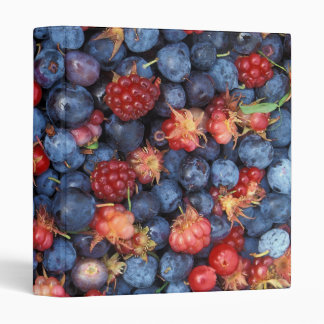 Collage of Wild Berries Blueberries Raspberries Vinyl Binders