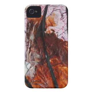Collage  Products iPhone 4 Case-Mate Cases
