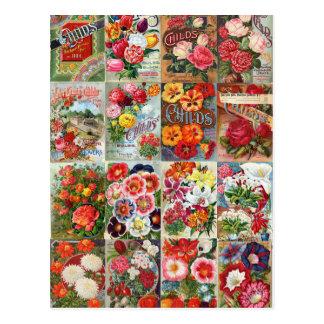 Collage vintage de jardin de paquets de graine de carte postale
