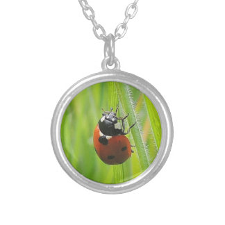 """Collar """"Ladybird """" Silver Plated Necklace"""