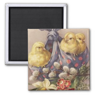 Collecting Easter Chicks Square Magnet