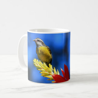 Collection birds of Brazil - Coereba flaveola Coffee Mug