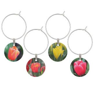 Collection de marque - verre de tulipes de ressort marque-verre