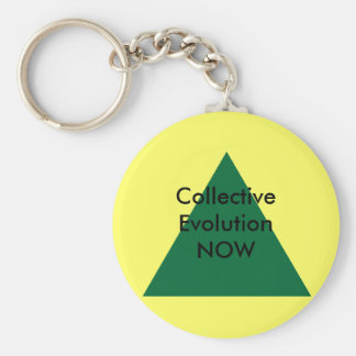 Collective Evolution NOW The MUSEUM Zazzle Gifts Key Chain