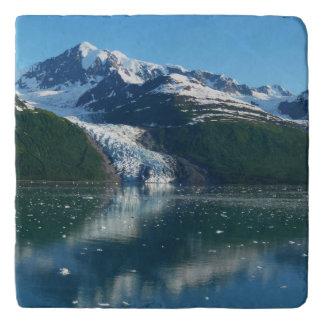 College Fjord II Beautiful Alaska Photography Trivet