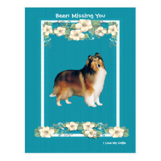 Colli on Turquoise Floral Missing You Postcard