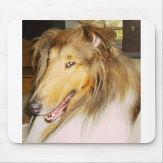 COLLIE1 MOUSE PAD