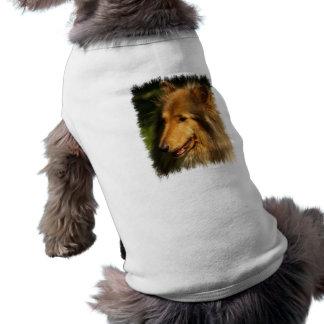Collie Breed Dog Shirt