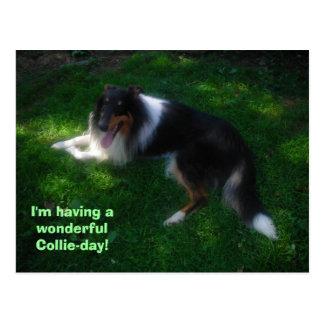 collie-day postcard