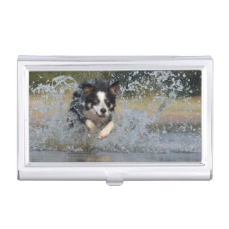 Collie Dog Case For Business Cards