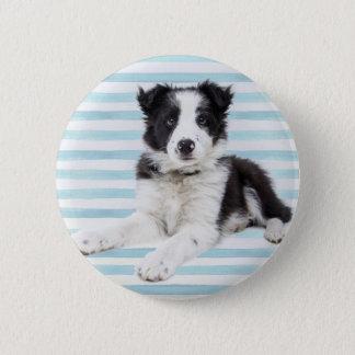 Collie Dog Pup 2 Inch Round Button