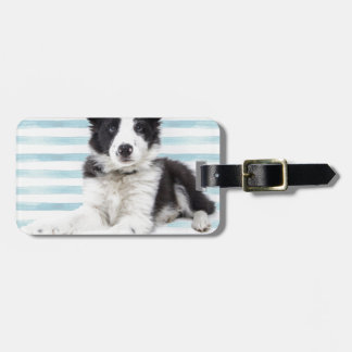 Collie Dog Pup Luggage Tag