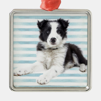 Collie Dog Pup Metal Ornament