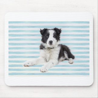 Collie Dog Pup Mouse Pad