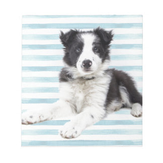 Collie Dog Pup Notepad