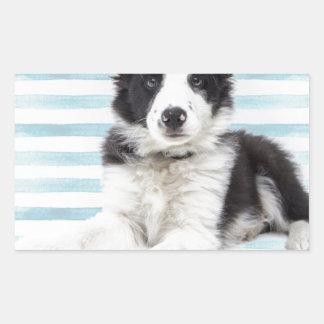 Collie Dog Pup Sticker