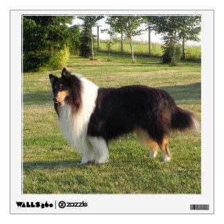 Collie Dog Wall Sticker