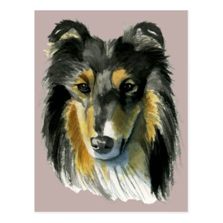 Collie Dog Watercolor Illustration Postcard