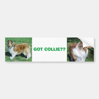 COLLIE, GOT COLLIE?? BUMPER STICKER