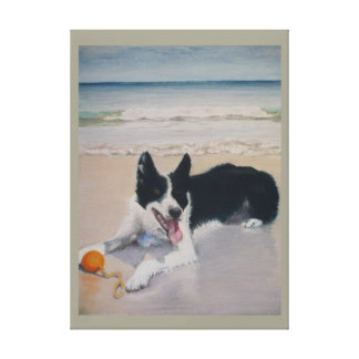 collie playing on the beach canvas print