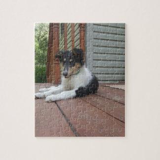 Collie Puppy Cutie Jigsaw Puzzle