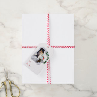 Collie Puppy in the Mailbox Gift Tags