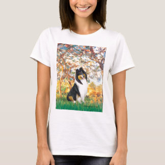 Collie (Tri3) - Spring T-Shirt