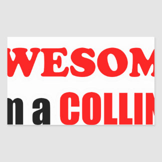 Collins Awesome Family Stickers