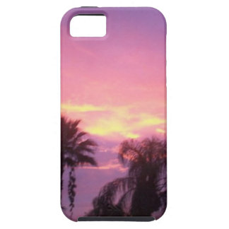 Coloful Florida Sunset iPhone 5 Cases
