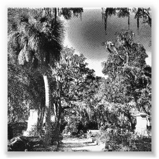 Colonial Cemetery Art Photo