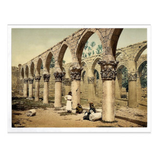 Colonnade of the ancient mosque, Baalbek, Holy Lan Postcard