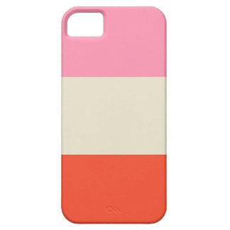 Color Block iPhone 5 Case