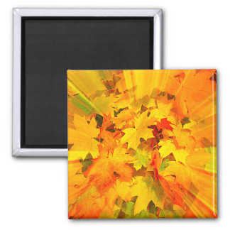 Color Burst of Fall Leaves Autumn Colors Magnet