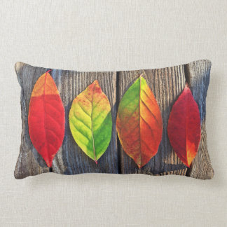color leaves pillow