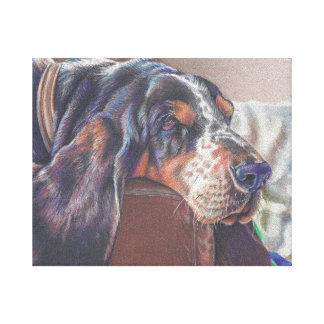 color pencil drawing of basset hound dog on canvas