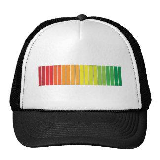 'COLOR PROGRESS' TRUCKER HAT